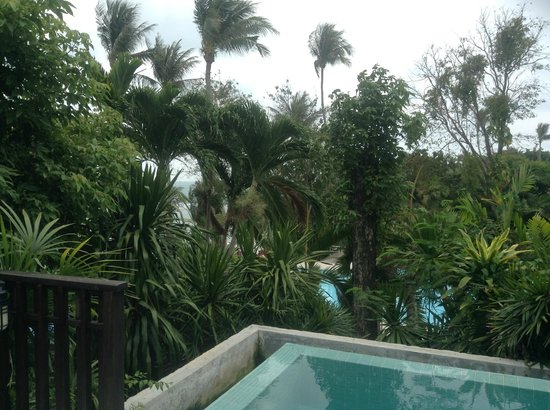 Centara Villas Samui : My view of the sea and dirty pool