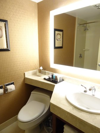 Crowne Plaza Boston-Newton Hotel: Kign Executive - ванная