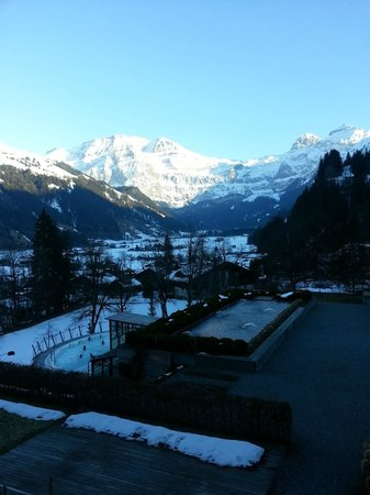 Lenkerhof gourmet spa resort: View from hotelroom
