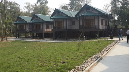 Infinity Resort Kaziranga: View of Cottages