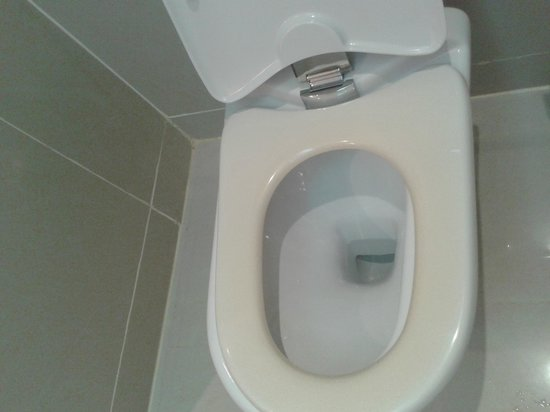 Movenpick Hotel West Bay Doha : the toilet was looking horrible