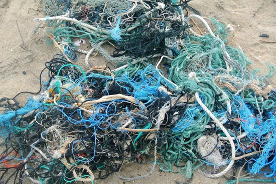 Shahira Hotel Nilaveli: vissernetten op het strand