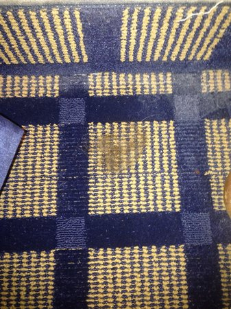 Country Inn & Suites By Carlson, Lake City: Big hair wad in floor next to my bed... Housekeeping couldn't see this little jewel?