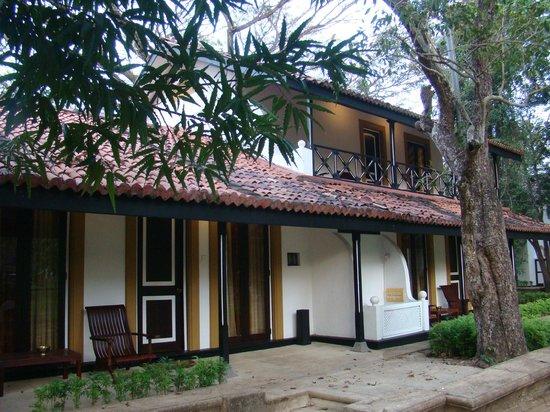 Cinnamon Lodge Habarana : Our Room Lodge 94