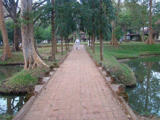 Cinnamon Lodge Habarana : Walking Through the Gardens