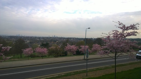 Rhodes Avenue Homestay B&B: View of London from Alexandra Palace ~ Cherry Blossoms