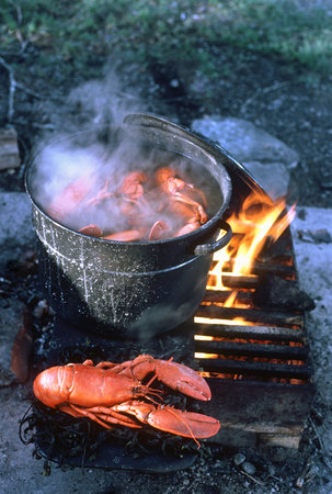 Kennebec Inn: Cooking lobster by the fire