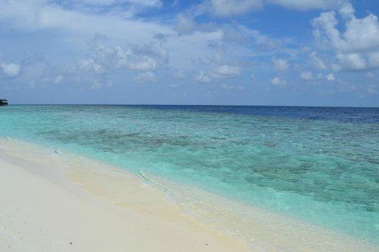 Fihalhohi Island Resort: Mare