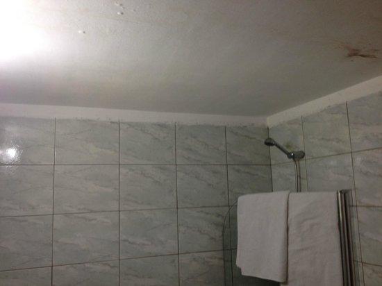 Hotel Tropical: Humedad