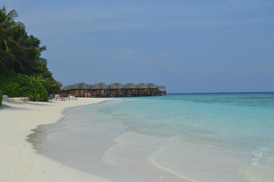 Fihalhohi Island Resort: Panorama
