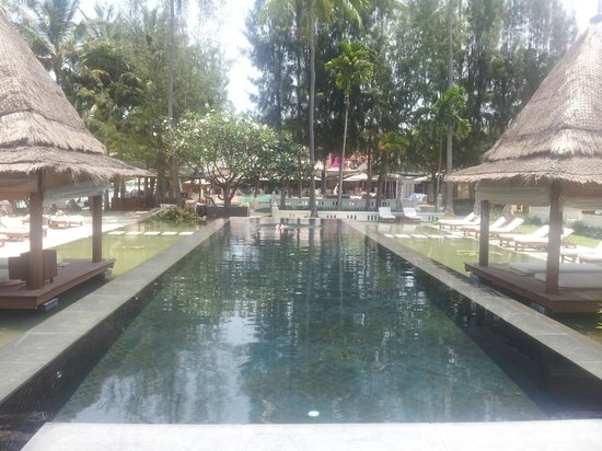 SALA Samui Resort And Spa : swimming pool