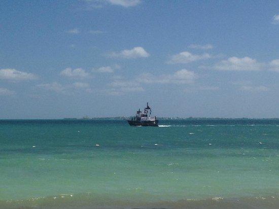 Beloved Playa Mujeres: Captain Hook