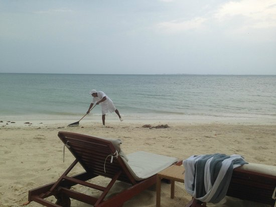 Beloved Playa Mujeres: They always clean the beach