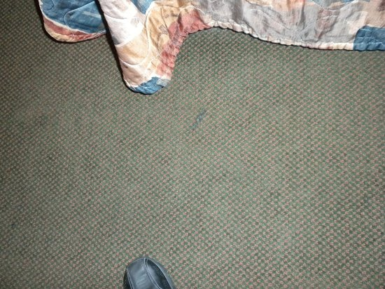 Siena Suites : Stained floor.