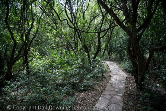 andBeyond Bateleur Camp: Path to our room.