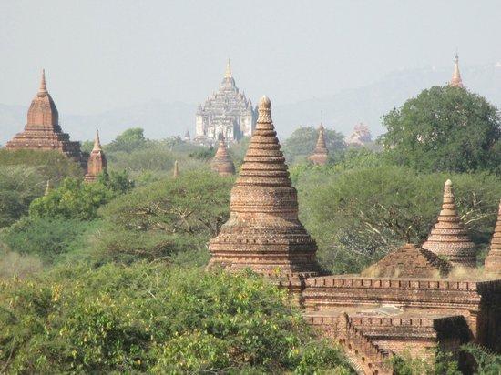 Tempel von Bagan: Temple Photo