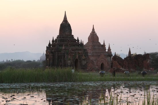 Aureum Palace Hotel & Resort Bagan : view from our suite