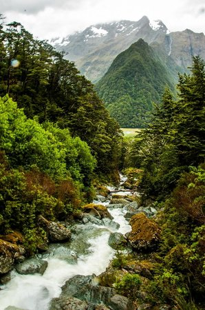 Routeburn track (between Flats and Falls huts)