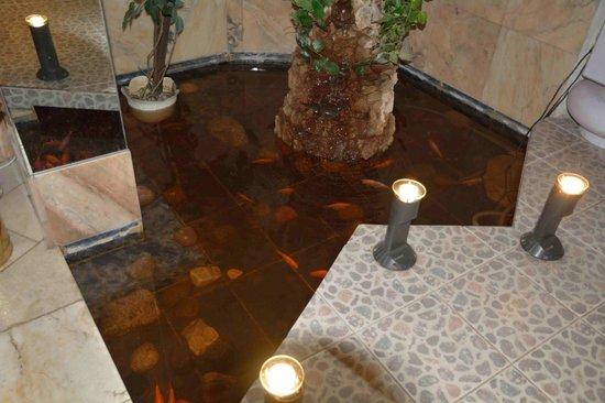 Hotel Man-Tess: Бассейн с рвбками