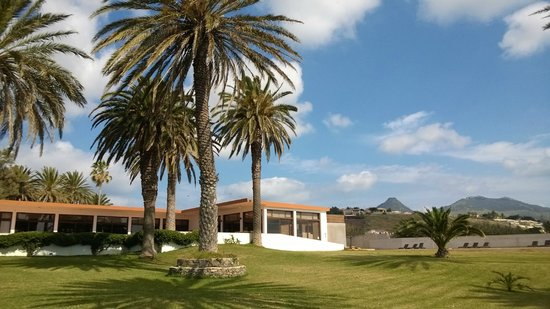 Hotel Porto Santo & SPA: Garden