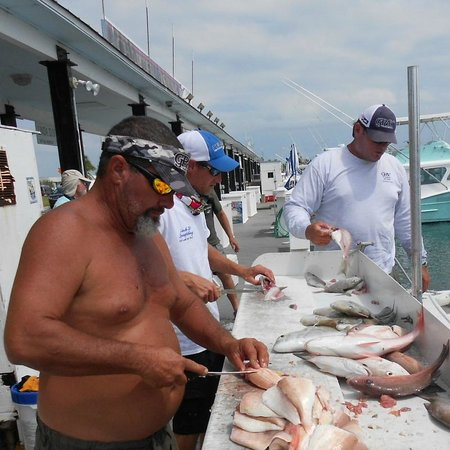 Linda D Sportfishing : Cleaning of the fish
