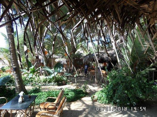 Agonda White Sand: the grounds