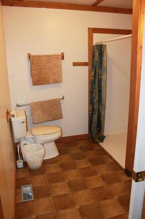 Marrick's Landing Cottage Resort : Wheelchair accessible bathroom in Blue Heron cottage