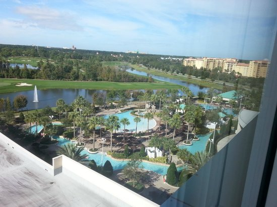 lovely view from up here picture of hilton orlando. Black Bedroom Furniture Sets. Home Design Ideas