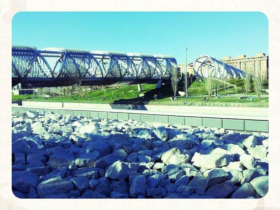 Parque Madrid Río: Parque Rio Manzanares