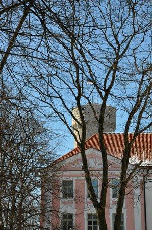 Tallinn Free Tour : Здание парламента