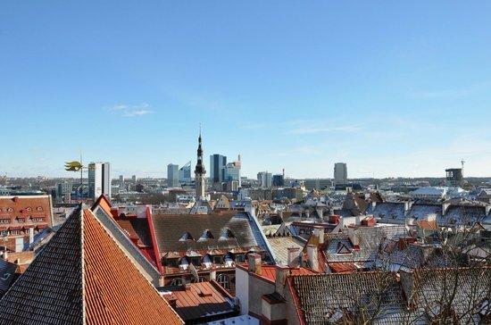 Tallinn Free Tour : Смотровая площадка
