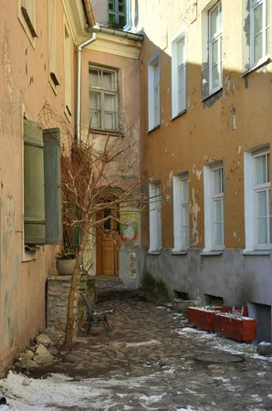 Tallinn Free Tour : Нетуристический уголок