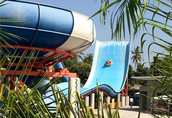 Splash Jungle Waterpark: เครื่องเล่นสำหรับผู้ใหญ่ สนุกดี
