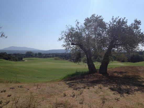 The Westin Resort, Costa Navarino: golf course
