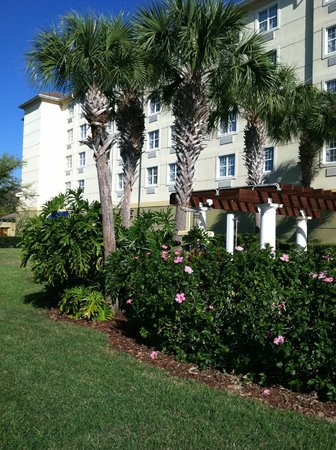 Holiday Inn Sarasota - Lakewood Ranch: Landscaping around the pool and hot tub.