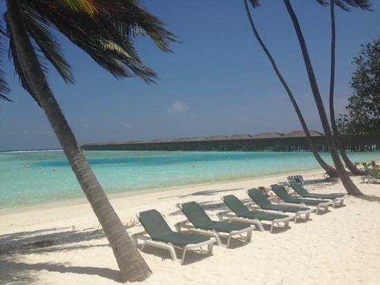 Meeru Island Resort & Spa: paradise
