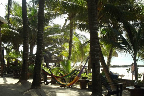 Beachfront Hotel La Palapa: Entrada al Hotel