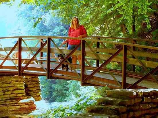 Letchworth State Park: bridge over wolf creek