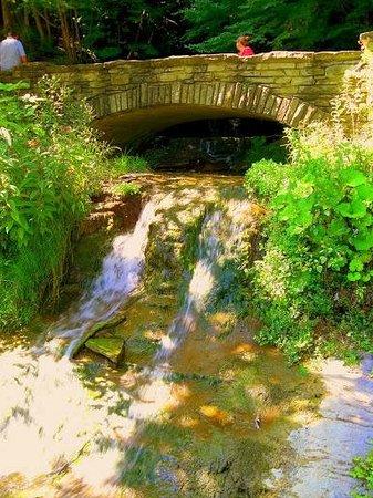 Letchworth State Park: shadow falls