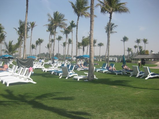 JA Jebel Ali Beach Hotel : Beds in the grounds