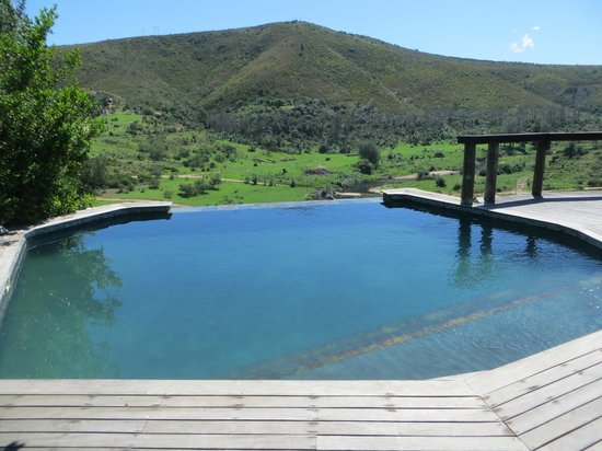 Botlierskop Private Game Reserve: Infinity pool overlooking the reserve