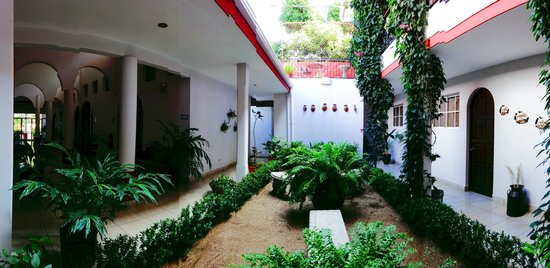 Hotel Executive Managua: Jardin