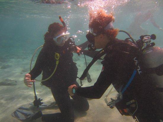 Living Ocean Scuba: Dave reviewing skills