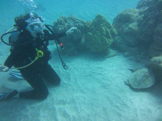 Living Ocean Scuba: Feeling good!