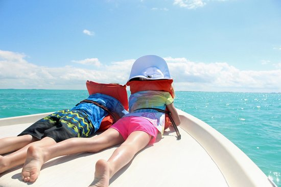 Take Me There Charters: Where are those dolphins!