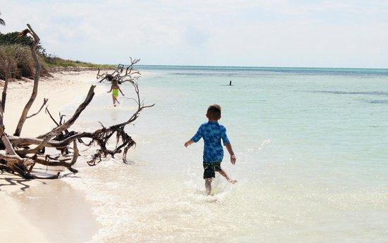 Take Me There Charters: beautiful beaches
