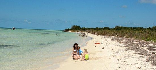 Take Me There Charters: Island fun