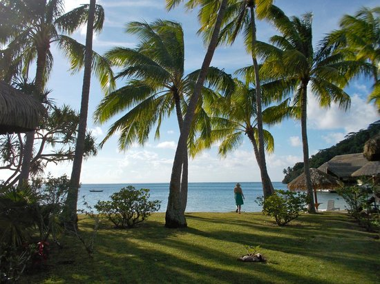 Royal Huahine : Vew between some garden bungalows