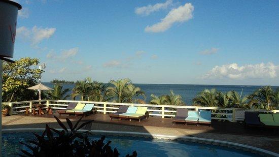 Turquoise Bay Dive & Beach Resort: Mar Desde la ¨Piscina