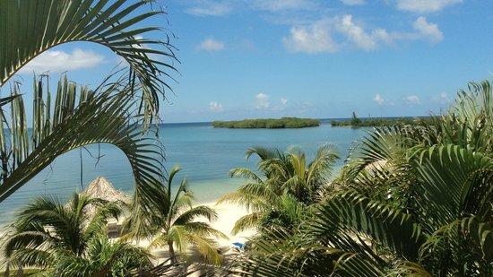 Turquoise Bay Dive & Beach Resort: Mar desde la habitacion